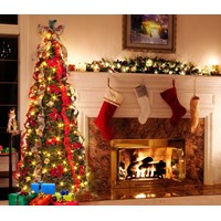 Pre-Lit  Traditional Pop-Up Tree - 6ft
